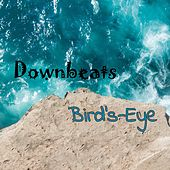 Bird's-Eye by The Downbeats