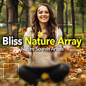 Bliss Nature Array de Nature Sounds Artists