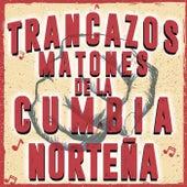 Trancazos Matones De La Cumbia Norteña de Various Artists