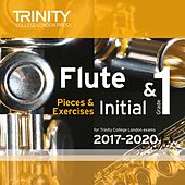 Initial & Grade 1 Flute Pieces for Trinity College London Exams 2017-2020 de Various Artists