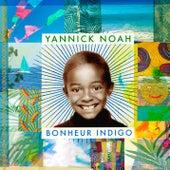 Bonheur indigo de Yannick Noah