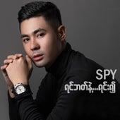 Yin Bat Nae Yinn Ywae by Spy