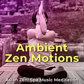 Ambient Zen Motions by Various Artists