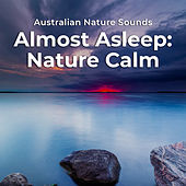 Almost Asleep: Nature Calm by Various Artists