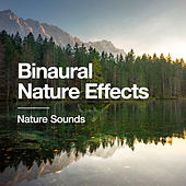 Binaural Nature Effects by Nature Sounds (1)