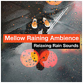 Mellow Raining Ambience by Various Artists