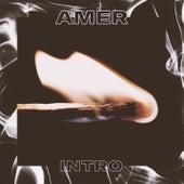 Intro de AMG
