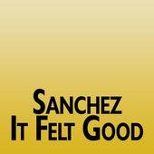 It Felt Good by Sanchez