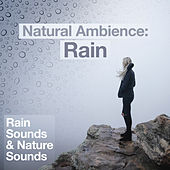 Natural Ambience: Rain by Rain Sounds