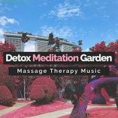 Detox Meditation Garden von Massage Therapy Music