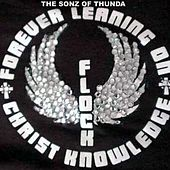 F.L.O.C.K. de The Sonz Of Thunda