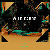 Wild Cards 05 by Various Artists