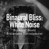 Binaural Bliss: White Noise de Binaural Beats Brainwave Entrainment