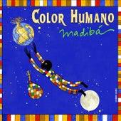 Madibá by Color Humano
