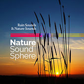 Nature Sound Sphere by Rain Sounds