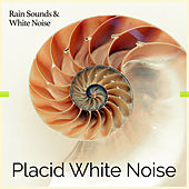 Placid White Noise by Rain Sounds and White Noise