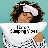 Natural Sleeping Vibes by Various Artists