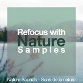 Refocus with Nature Samples by Nature Sounds - Sons de la nature