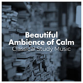 Beautiful Ambience of Calm by Classical Study Music (1)