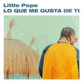 Lo Que Me Gusta de Ti by Little Pepe