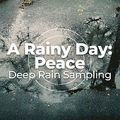 A Rainy Day: Peace von Various Artists