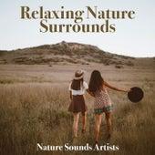 Relaxing Nature Surrounds de Nature Sounds Artists