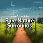 Pure Nature Surrounds de Nature Sounds Artists