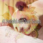 41 Peaceful and Quiet Sounds de Baby Sleep Sleep
