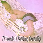 77 Sounds of Soothing Tranquility von Rockabye Lullaby