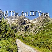 43 The Art of Yoga von Entspannungsmusik