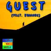 Guest (feat. Equinox) by Allerlei von Nicolai