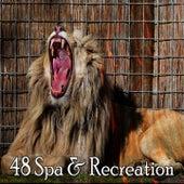 48 Spa & Recreation de Smart Baby Lullaby
