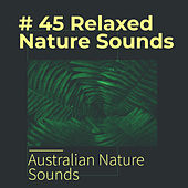 # 45 Relaxed Nature Sounds von Various Artists