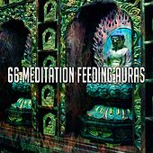 66 Meditation Feeding Auras von Massage Tribe