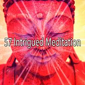 57 Intrigued Meditation de Zen Meditation and Natural White Noise and New Age Deep Massage