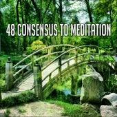 48 Consensus to Meditation von Massage Therapy Music