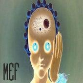Marciana de M.E.F.