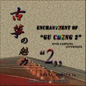 Enchantment Of Gu Zheng 2 by Shinji Ishihara