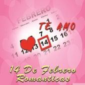 14 de Febrero Romanticas de Various Artists
