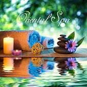 Oriental Spa: Relaxing Music Therapy & Deep Harmony de Zen Meditation and Natural White Noise and New Age Deep Massage