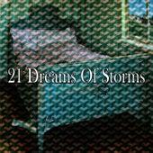 21 Dreams of Storms de Rain Sounds (2)