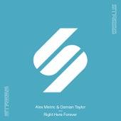 Right Here Forever von Alex Metric