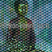 61 Brain Training Tracks by Classical Study Music (1)