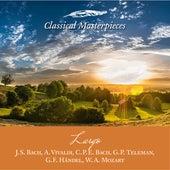 Largo: J.S. Bach, A. Vivaldi, C.P.E. Bach, G. P. Teleman,G.F. Händel, W.A.Mozart (Classical Masterpieces) de Various Artists