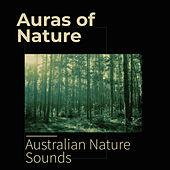 Auras of Nature by Various Artists