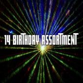 14 Birthday Assortment de Happy Birthday