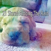 21 Storm Among the Rain by Rain Sounds and White Noise