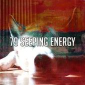 79 Seeping Energy de S.P.A