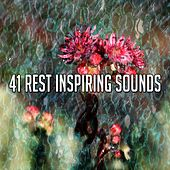 41 Rest Inspiring Sounds de White Noise Babies