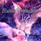 25 Luciously Harmonious Storms de Thunderstorm Sleep